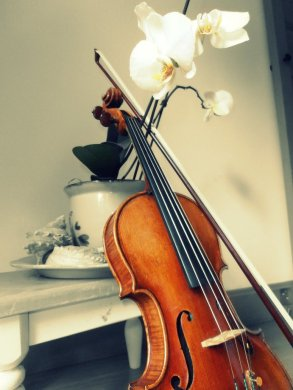 violin_and_orchids_by_unipolly-d3ky5h7