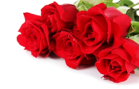 bigstock-Beautiful-bouquet-of-roses-iso-49772927.jpg